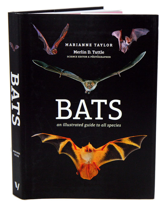 Bats: an illustrated guide to all species. Marianne Taylor.