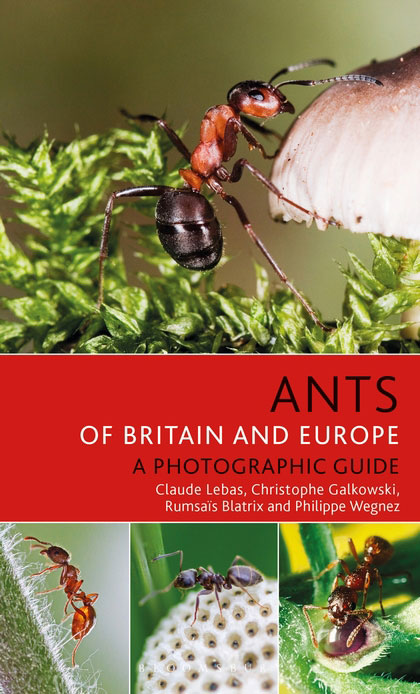 Ants of Britain and Europe: a photographic guide. Claude Lebas.
