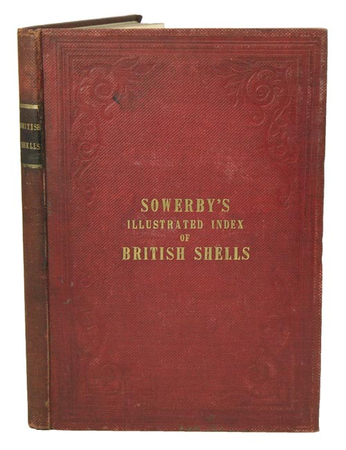 Illustrated index of British shells. Containing all the recent species with names and other information. G. B. Sowerby.