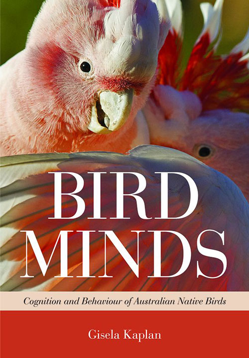 Bird minds: cognition and behaviour of Australian native birds. Gisela Kaplan.