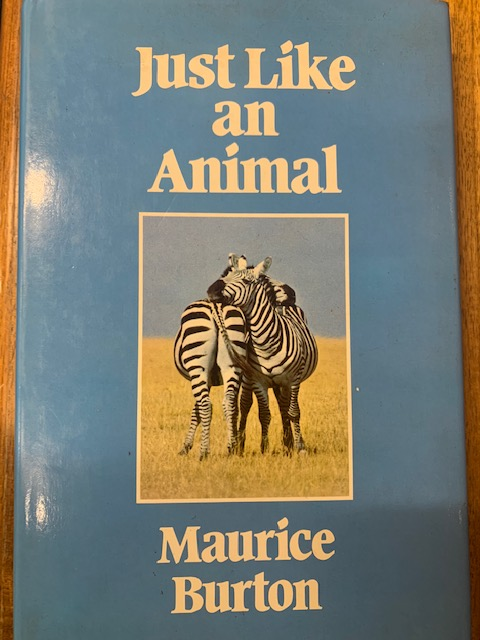 Just like an animal. Maurice Burton.