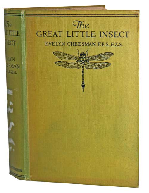 The great little insect. Evelyn Cheesman.