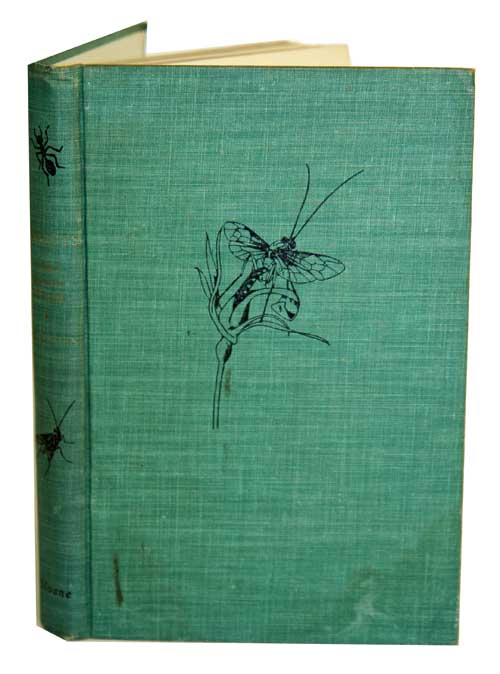 Insects: their secret world. Evelyn Cheesman.