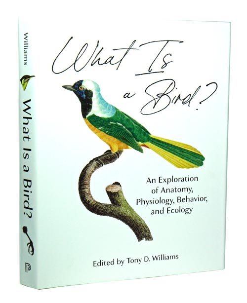 What is a bird: an exploration of anatomy, physiology, behavior, and ecology. Tony D. Williams.