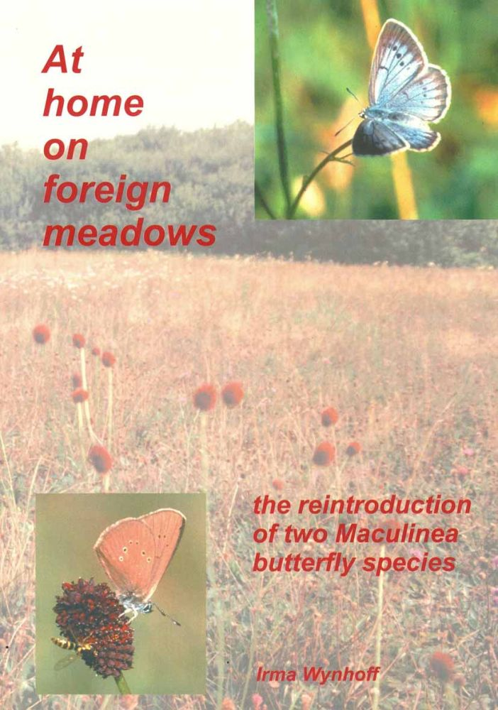 At home on foreign meadows: the reintroduction of two Maculinea butterfly species. Irmgard Wynhoff.