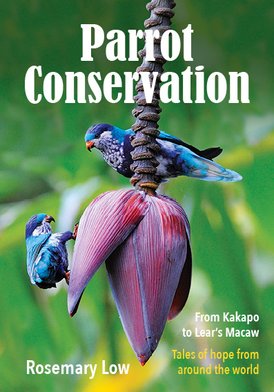 Parrot conservation from Kakapo to Lear's macaw: tales of hope from around the world. Rosemary Low.