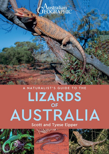 Australian Geographic: a naturalist's guide to the lizards of Australia. Scott Eipper, Tyese Eipper.