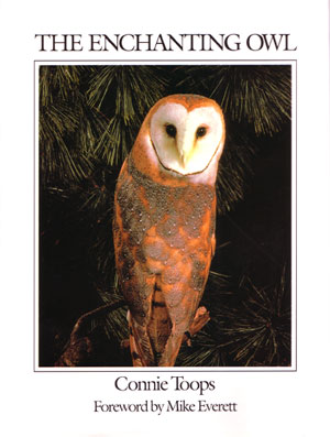 The enchanting owl. Connie Toops.