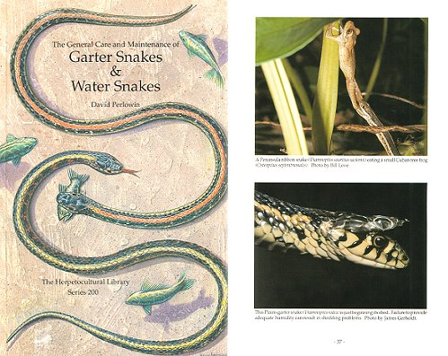 The general care and maintenance of Garter Snakes and Water Snakes. David Perlowin.