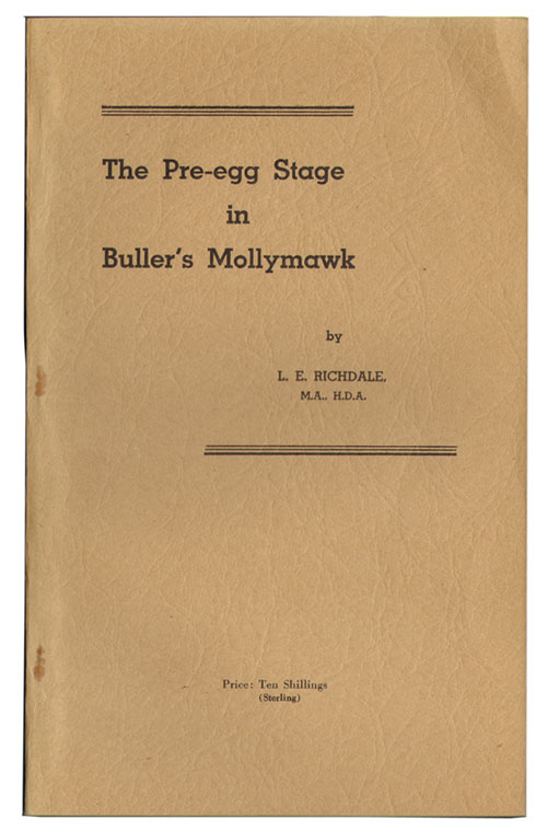 The pre-egg stage in Buller's Mollymawk. L. E. Richdale.