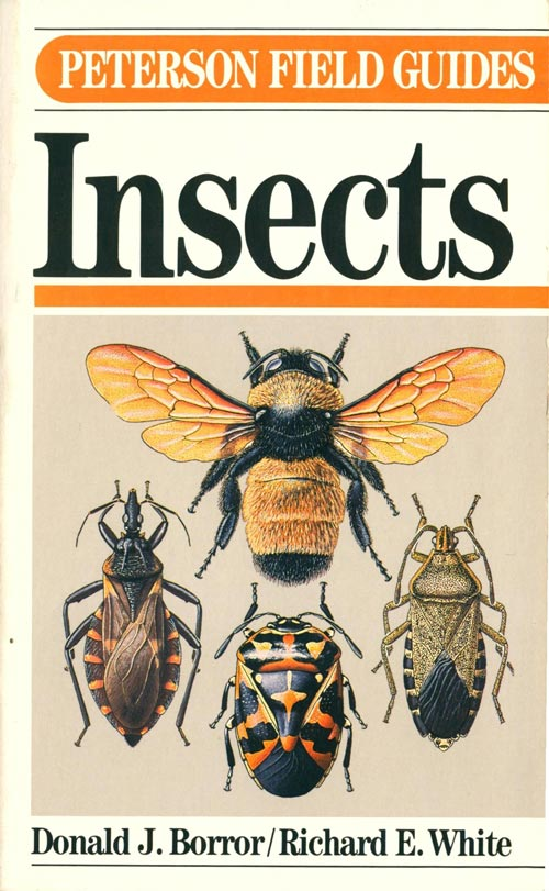 A field guide to insects: America north of Mexico. Donald J. Borror, Richard E. White.