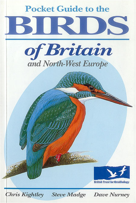 Pocket guide to the birds of Britain and northwest Europe. Chris Kightley.