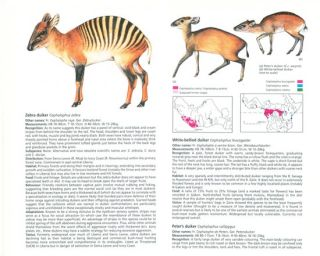 The Kingdon field guide to African mammals.