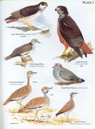 Birds of Somalia.
