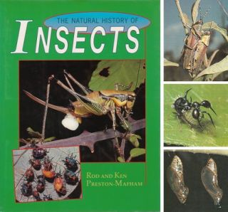 The natural history of insects. Rod Preston-Mafham, Ken, Preston-Mafham