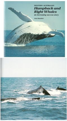 Western Australian Humpback and Right Whales: an increasing success story. John Bannister