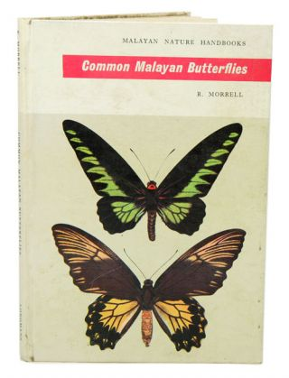 Common Malayan butterflies. R. Morrell