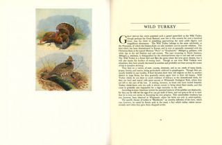 British and American game-birds. With a chapter on shooting in America by Eugene V. Connett.