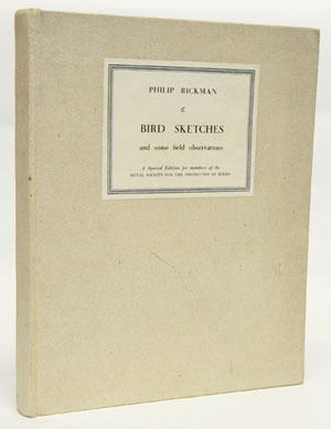 Bird sketches and some field observations. Philip Rickman