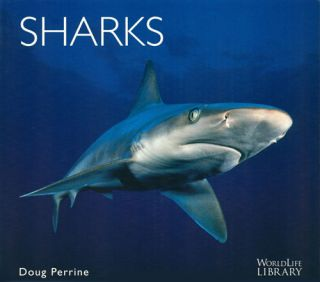 Sharks. Doug Perrine.