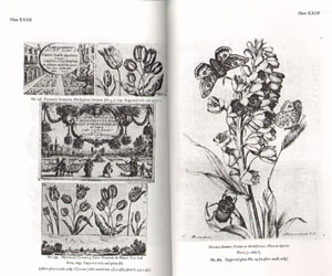 Catalogue of botanical books in the Collection of Rachel McMasters Miller Hunt.