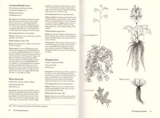 Field guide to coastal wetland plants of the southeastern United States.