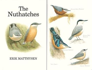 The nuthatches.