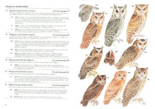Owls: a guide to the owls of the world.