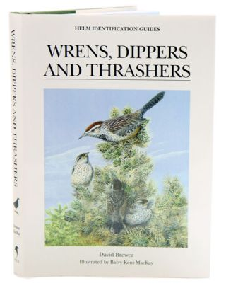 Wrens, dippers and thrashers. Dave Brewer.