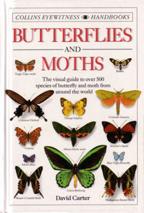 Butterflies and moths. David Carter