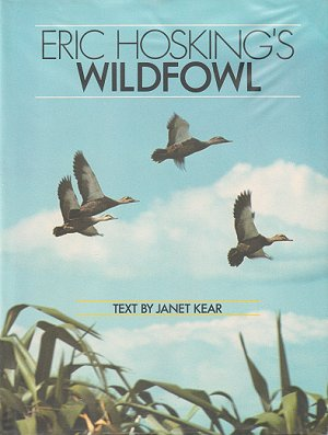 Eric Hosking's wildfowl