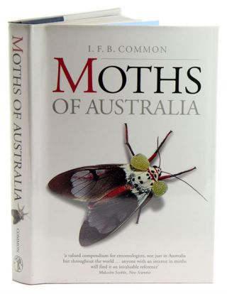 Moths of Australia. I. F. B. Common