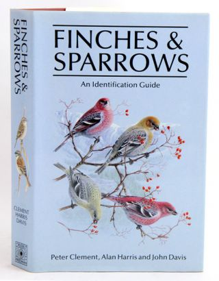 Finches and sparrows.