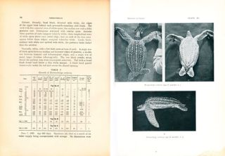 The tetrapod reptiles of Ceylon, volume one: Testudinates and Crocodilians [all published]