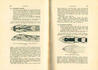 The fauna of British India, Ceylon and Burma, including the whole of the Indo-Chinese sub-region. Reptilia and Amphibia, volume three: Serpentes.