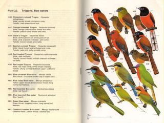A field guide to the birds of south-east Asia, covering Burma, Malaya, Thailand, Cambodia, Vietnam, Laos and Hong Kong.