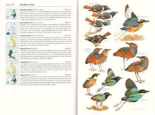 A guide to the birds of the Philippines.