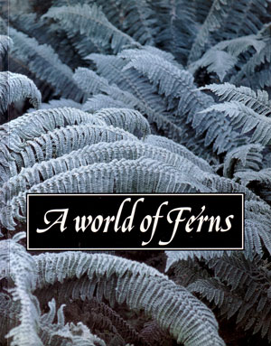 A world of ferns