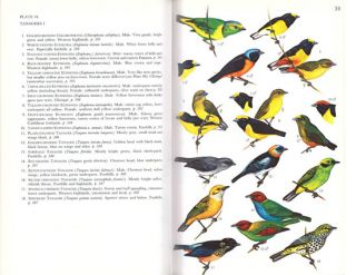 A guide to the birds of Panama, with Costa Rica, Nicaragua and Honduras.