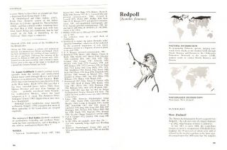 Naturalized birds of the world.