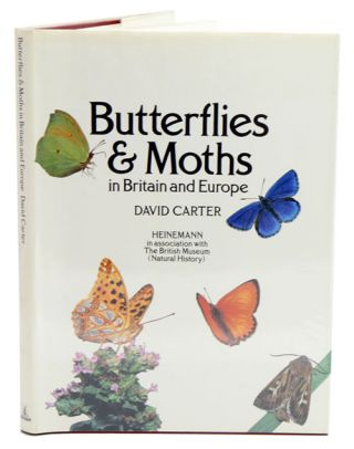 Butterflies and moths in Britain and Europe. David Carter.