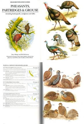 Pheasants, partridges and grouse: a guide to the pheasants, partridges, quails, grouse, guineafowl, buttonquails and sandgrouse of the world.