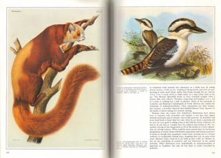 The art of natural history: animal illustrators and their work.