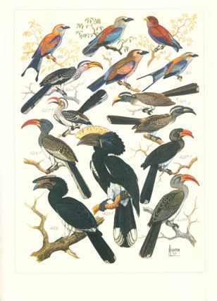 The paintings of Norman Lighton for Roberts Birds of South Africa.