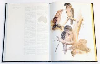 Nocturnal birds of Australia.