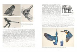 Pearls to painting: a naturalist in Ceylon: the memoirs of George Morrison Reid Henry.