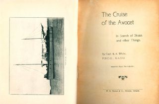 The cruise of the Avocet: in search of skuas and other things.