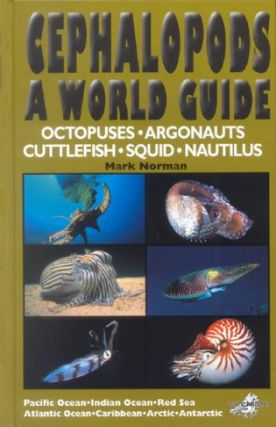 Cephalopods: a world guide; octopuses, argonauts, cuttlefish, squid, nautilus. Mark Norman