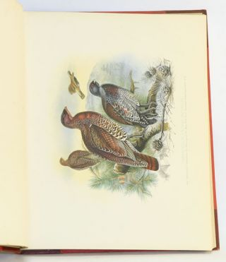 Game birds and shooting-sketches: illustrating the habits, modes of capture, stages of plumage, and the hybrids and varieties which occur amongst them.