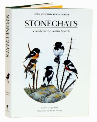 Stonechats: a guide to the genus Saxicola. Ewan Urquhart